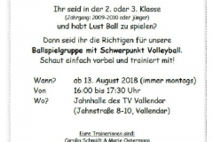 Flyer Volleyball